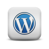 Ook een Airbrush WordPress Website?